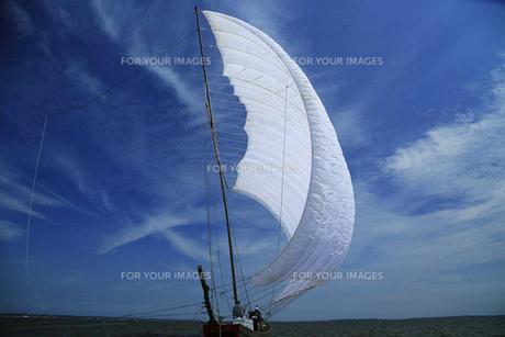 帆船の写真素材 [FYI00226249]