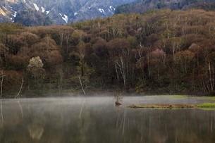 湖畔の写真素材 [FYI00226256]