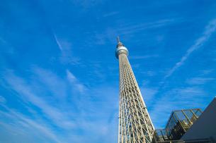東京スカイツリーの写真素材 [FYI00226494]