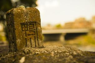 京都・鴨川の写真素材 [FYI00226549]