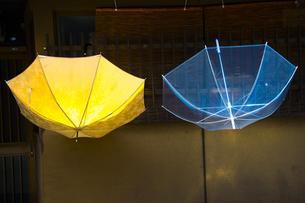 傘の写真素材 [FYI00226552]