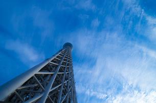 東京スカイツリーの写真素材 [FYI00226569]