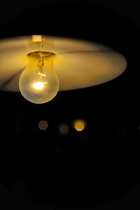 白熱電球の写真素材 [FYI00226603]