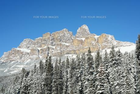 雪のキャッスルマウンテンの写真素材 [FYI00226614]