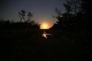月明かりの写真素材 [FYI00226695]