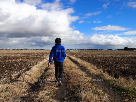 あぜ道を歩く男の子の後姿の写真素材 [FYI00226704]
