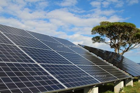 太陽光発電の写真素材 [FYI00226801]