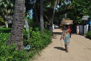 頭で荷物を運ぶインド女性の写真素材 [FYI00227079]