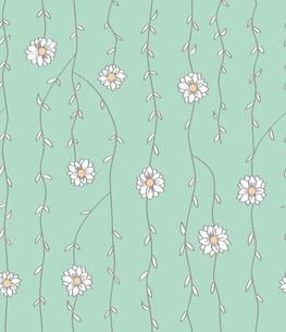 蔓植物と白い花の素材 [FYI00227124]