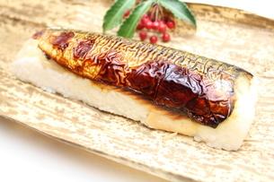 焼き鯖寿司の写真素材 [FYI00227281]