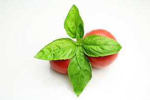 バジル&トマトの写真素材 [FYI00227488]