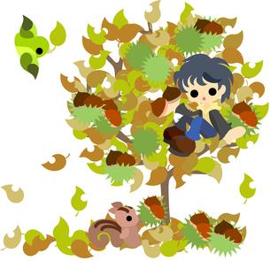 リスと一緒に栗を採る少年。の素材 [FYI00227921]