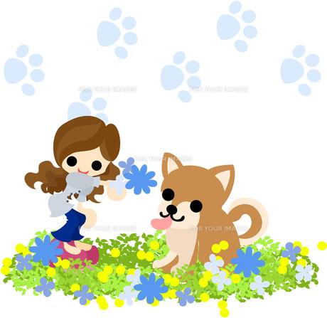 可愛い犬に花束をプレゼントする少女の写真素材 [FYI00227957]