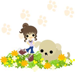 犬と散歩するシニヨンの女の子の写真素材 [FYI00227961]
