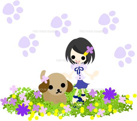 花畑で犬と一緒に散歩する小さな女の子の写真素材 [FYI00227963]