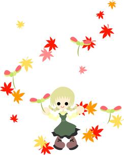風に乗って、楓の種が舞い落ちる。の写真素材 [FYI00227971]