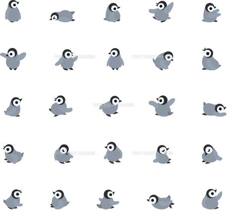 ペンギンの赤ちゃんのポーズ25パターンの写真素材 [FYI00228104]