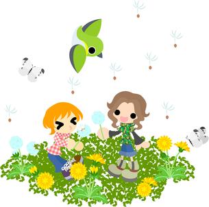 タンポポの咲く野原で綿毛を飛ばす子供たちの写真素材 [FYI00228131]