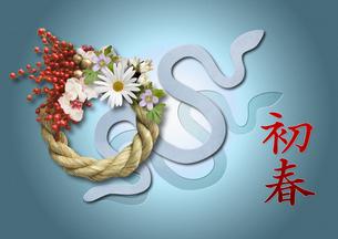 巳年 年賀 ヘビの写真素材 [FYI00228185]