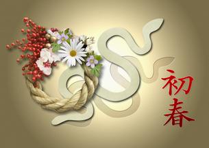 巳年 年賀 ヘビの写真素材 [FYI00228196]