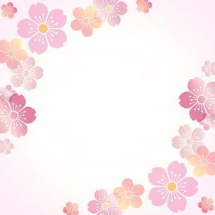 桜和風の写真素材 [FYI00228267]