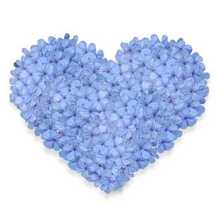 青い花のハートフラワーケーキの写真素材 [FYI00228313]