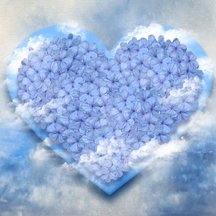 青い花のハートフラワーケーキ空付きの写真素材 [FYI00228321]