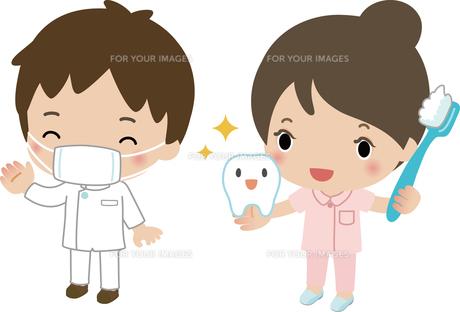歯ブラシを持った歯科助手と歯科医の写真素材 [FYI00228378]