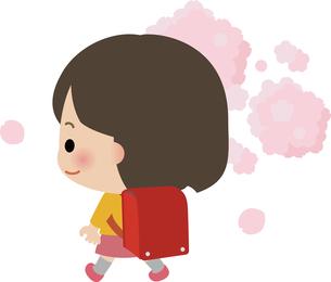ランドセルを担いだ小学生の女の子と桜の写真素材 [FYI00228383]