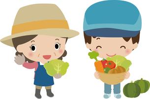 収穫した野菜を披露する農家の写真素材 [FYI00228422]