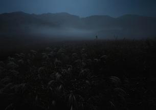 夜霧湧く との峰高原の夜の写真素材 [FYI00228742]