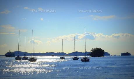 松島湾朝の風景「ヨット」の素材 [FYI00229598]