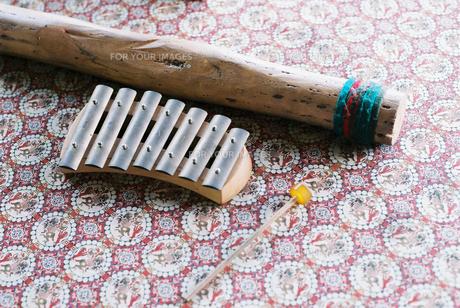ちいさな楽器の写真素材 [FYI00229722]