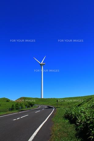 宗谷丘陵の風車と道の写真素材 [FYI00229781]