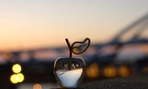 apple sunsetの写真素材 [FYI00229934]
