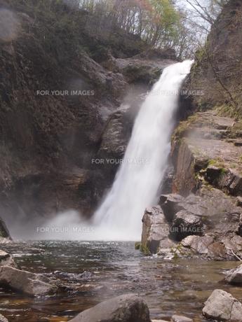 秋保大滝の写真素材 [FYI00229998]