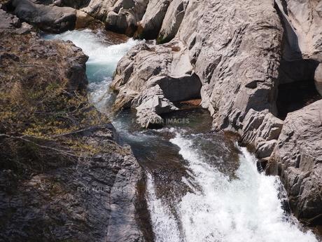 秋保大滝の写真素材 [FYI00229999]