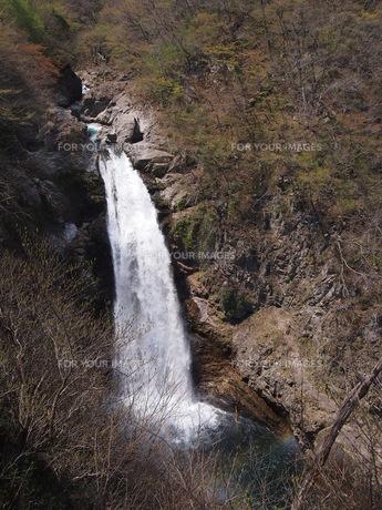 秋保大滝の写真素材 [FYI00230001]