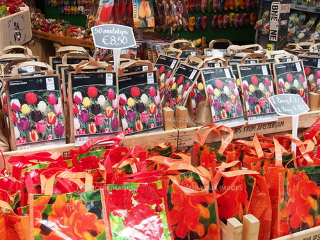 シンゲルの花市の写真素材 [FYI00230015]