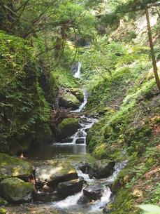 天滝ハイキングコースの写真素材 [FYI00230070]
