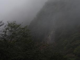霧の山の写真素材 [FYI00230099]