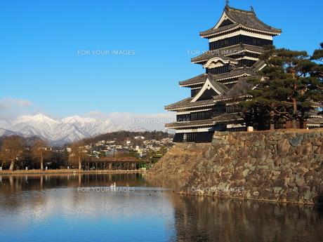 松本城の写真素材 [FYI00230115]