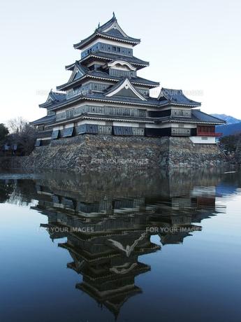 松本城の写真素材 [FYI00230123]