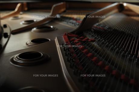 グランドピアノの写真素材 [FYI00230165]