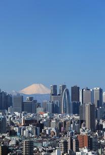 東京都心から富士山を望むの写真素材 [FYI00230185]