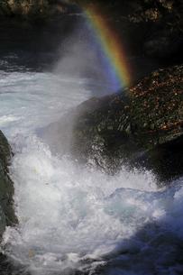 渓を飾るの写真素材 [FYI00230264]