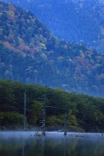大正池の朝の写真素材 [FYI00230428]
