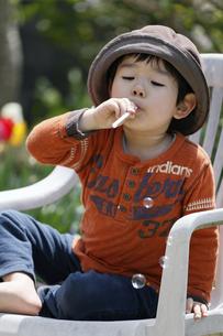 シャボン玉を吹く男の子の写真素材 [FYI00230509]