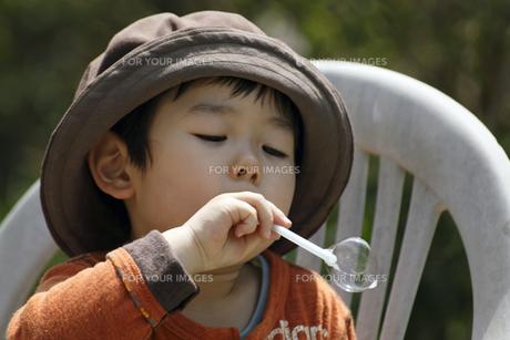シャボン玉を吹く男の子の写真素材 [FYI00230512]
