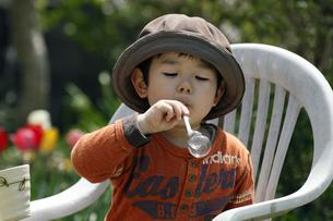 シャボン玉を吹く男の子の写真素材 [FYI00230521]